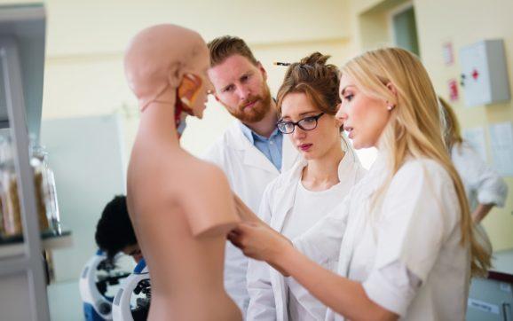 Jak wybrać specjalizację w medycynie?